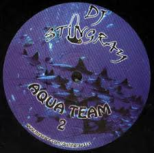 WeMe313.2 DJ Stingray Aqua Team 2