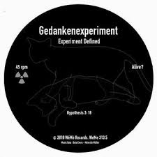 WeMe313.5 Gedankenexperiment Experiment Defined